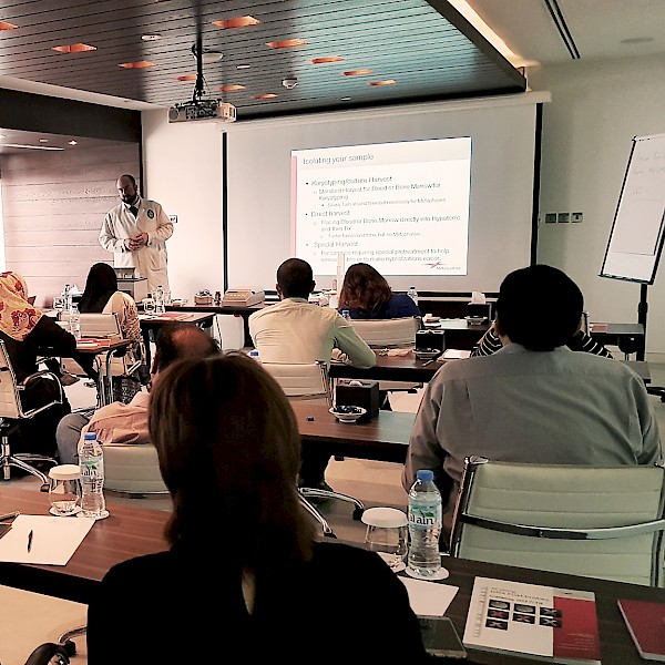 Second MetaSystems Workshop in Dubai
